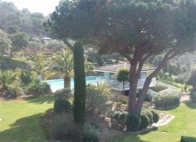 luxury villa for rent in Ramatuelle_garden